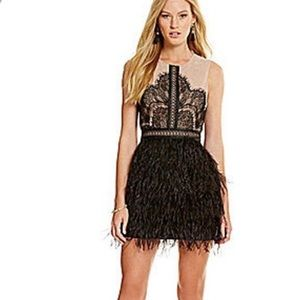 Gianni Bini Nude Black Lace Feather Party Dress L